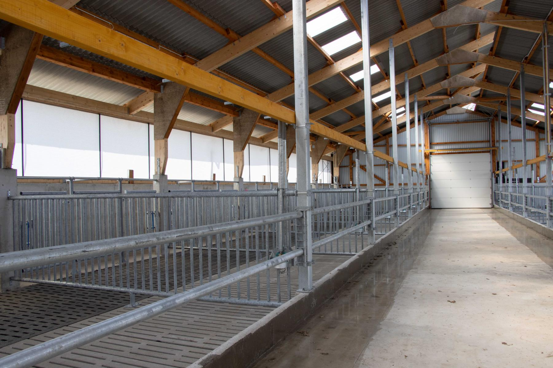 Read more about the article Germing Neubau Bullenstall