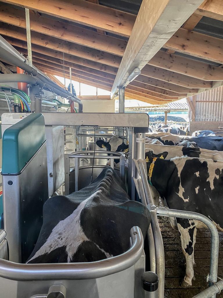 Read more about the article Neue Dairyrobot R9500 in einem renoviertem Stall